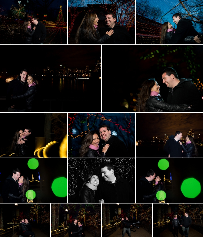 LIncoln-Park-Zoo-Lights-Chicago-Wedding-Photographer