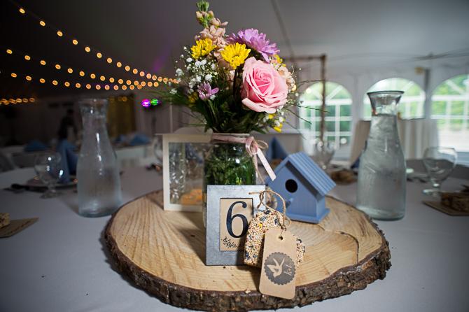 cd-me-wedding-rochester-wedding-photographer-nature-428