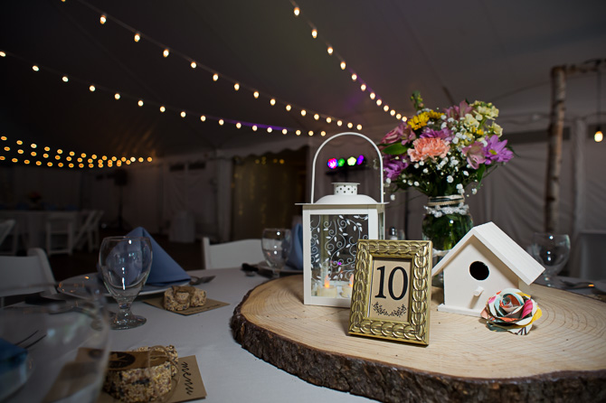 cd-me-wedding-rochester-wedding-photographer-nature-434