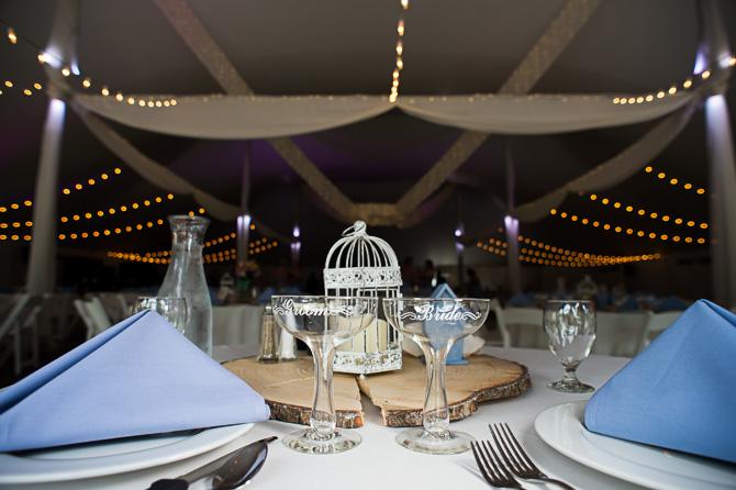 cd-me-wedding-rochester-wedding-photographer-nature-452