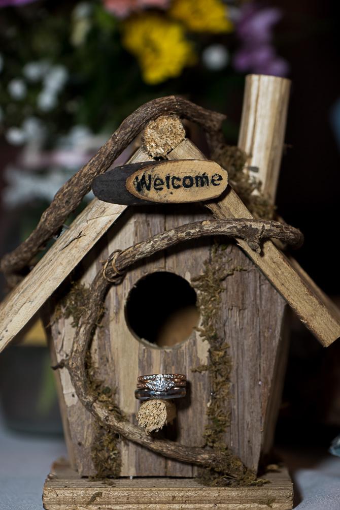 cd-me-wedding-rochester-wedding-photographer-nature-727