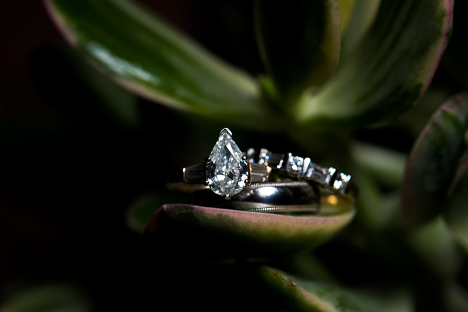 rochester-wedding-photographer-cantigny-park -wedding-80