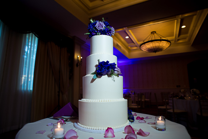 buffalo-wedding-photographer-carleton hotel-oak-park-2
