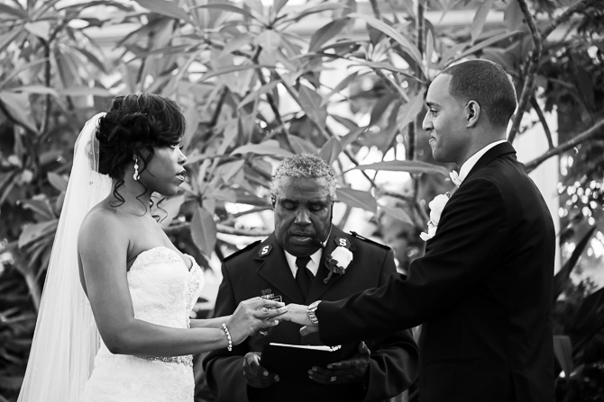 buffalo-wedding-photographer-garfield-park-conservatory-13