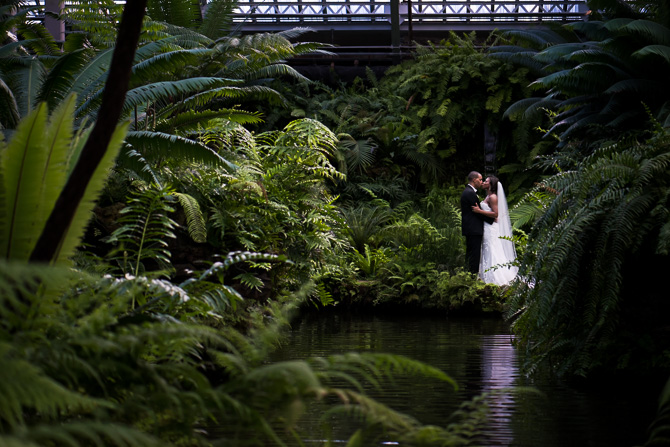 buffalo-wedding-photographer-garfield-park-conservatory-24