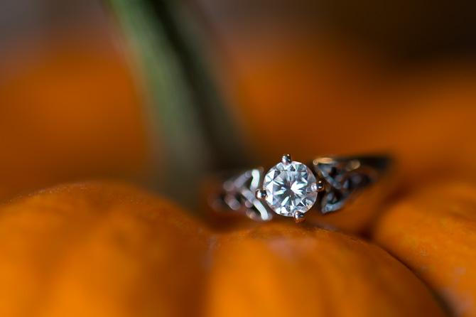 rochester-engagement-photographer-3